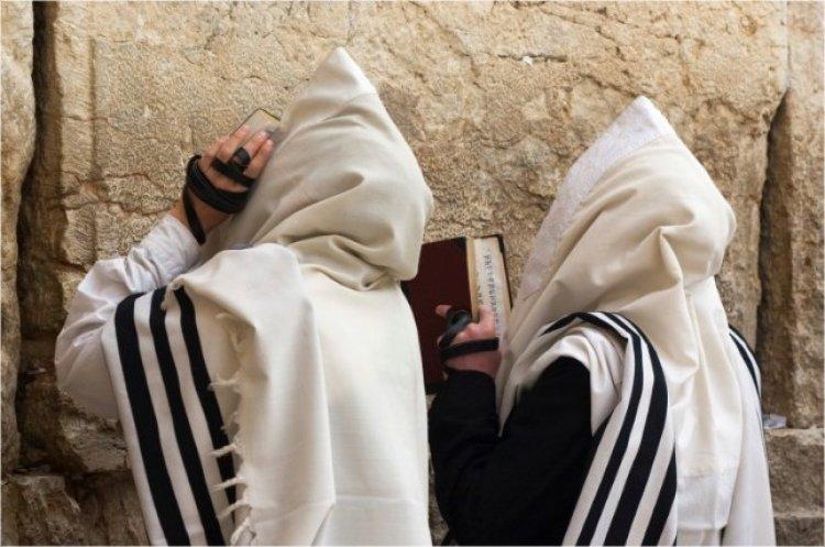 Photo of Ki Tavo. La gratitude – fondement du judaïsme