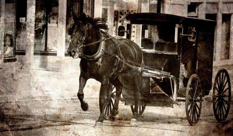 Photo of Le cheval a conduit le Trésor à son ancien maître