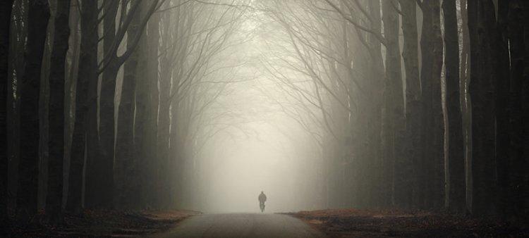 Photo of La solitude, cette amie précieuse