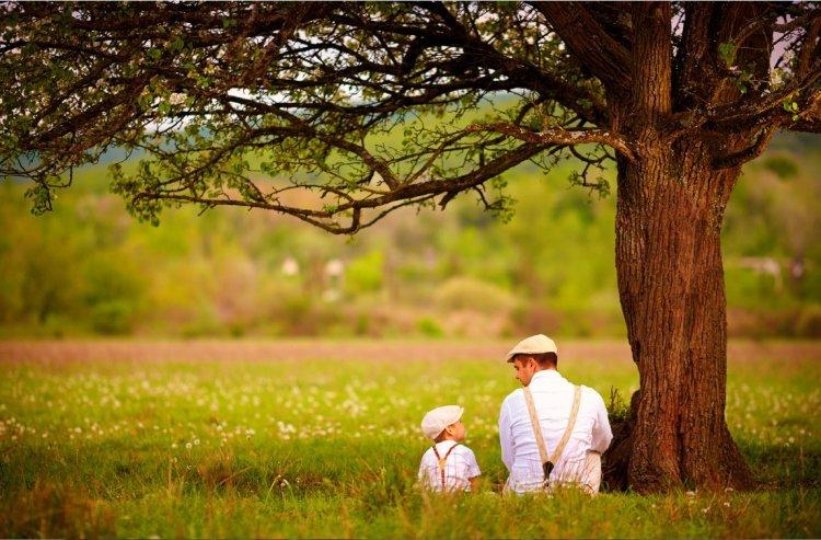 Photo of Les lois du respect des parents
