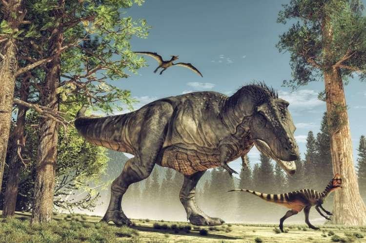 Photo of Y avait-il des dinosaures dans l'arche de Noa'h ?
