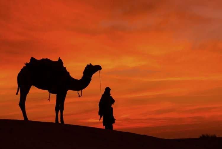 Photo of Paracha 'Express Lekh Lekha : Partir ? Pour mon bien !