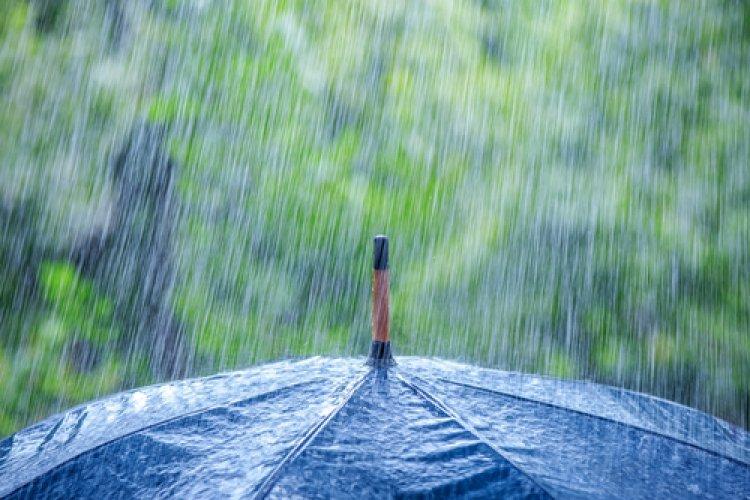 Photo of Léa Bennaïm : Aimez-vous la pluie ?