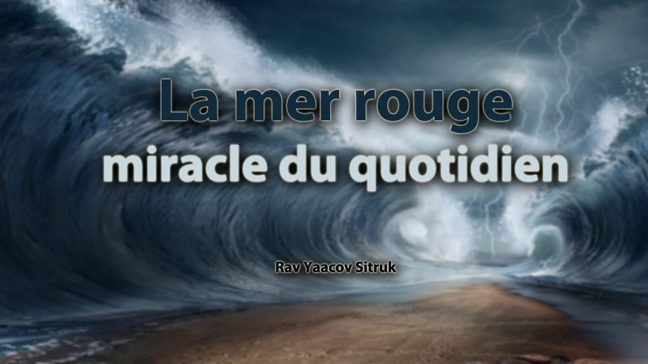 Photo of La mer rouge : miracle du quotidien