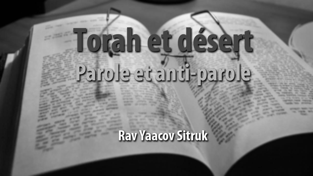 Photo of Torah et désert – parole et anti-parole
