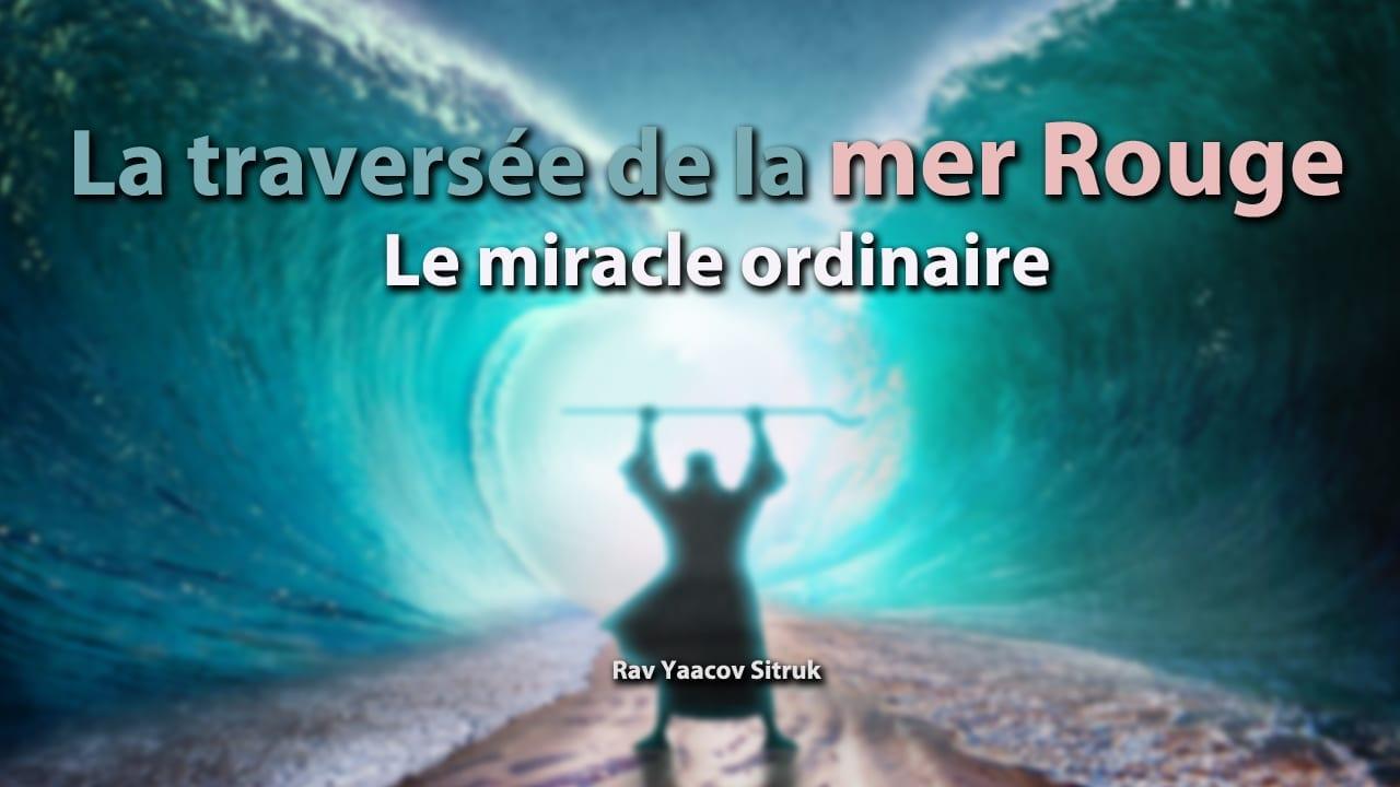 Photo of La traversée de la mer Rouge – le miracle ordinaire