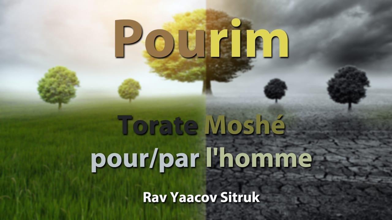 Photo of Torate Moshé – pour-par l'homme