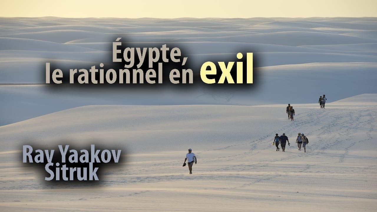 Photo of Égypte, le rationnel en exil