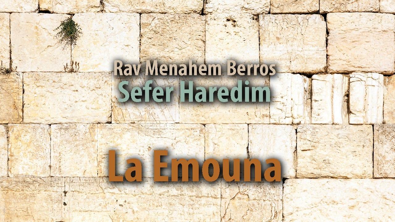 Photo of La Emouna